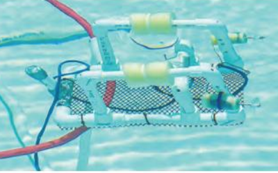 Women's Underwater Robotics Team Makes a Splash