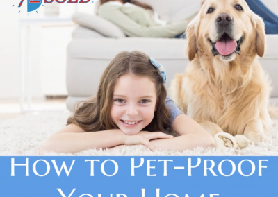 How to Pet-Proof Your Home